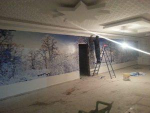 Dijital Baskılı Duvar Kağıdı